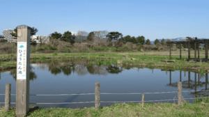 ひょうたん池から見た富士